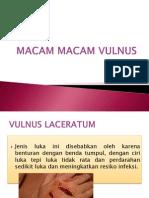 MACAM MACAM VULNUS