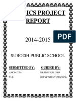 Physics Project Report Ark Dutta
