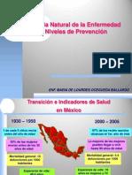 Historia Natural de La Enf 4