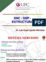 Snc y Snp Estructura Upc 2010 i[1]