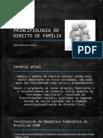 Principiologia Do Direito de Família Pronto