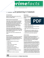 Prussic Acid Poisoning in Livestock