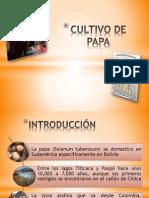 diapositivas (1).pptx