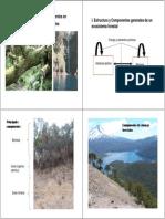 4 Ecosistemas