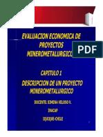 Cap 1 Descripcion Proyecto Minerometalurgico
