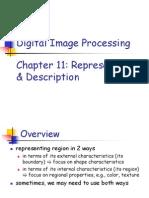 Chapter11 Rep Desc