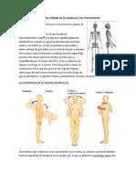 Columna Vertebral. Cuidado y Prevención de Lesiones.