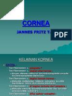 Cornea 2009
