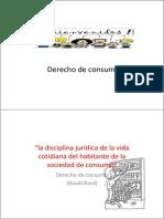 Relacion de consumo.pdf