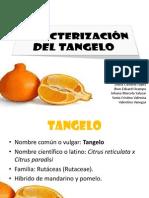 Caracterización Tangelo.pptx