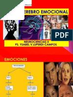 8. El Cerebro Emocional