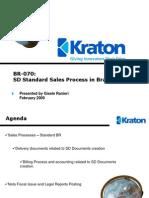 91065958 BR 070 SD Standard Sales Process in Brazil