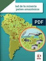 La Realidad de La Minería Ilegal en Países Amazónicos - SPDA