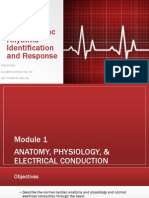 Basic EKG Refresher