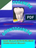 ODONTOGÊNESE - Cópia.pdf
