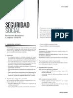 Analisis Legal de Prestaciones Economicas Essalud