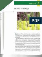 EcoAECONATU6ED Cap. 5.pdf