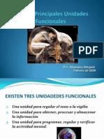 4_1ra unidad funcional.pptx