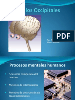 8_Lóbulos Occipitales.ppt
