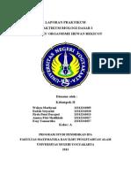 Laporan Praktikum Perilaku Organisme Hewan Bekicot.doc