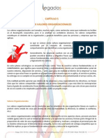Papers_Capitulo_5.pdf