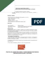 Practicadelaboratoriogrado11.PDF