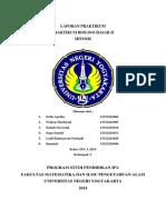 Laporan Praktikum Mitosis.docx