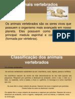 2- Animais Invertebrados