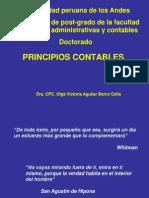 PCGA 2005pawer Doctrina Contable