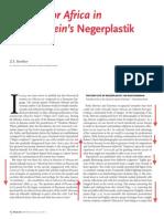 Einstein Mit Negreplastik