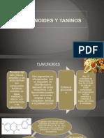 Expo N°1 de PAI-Flavonoides y Taninos