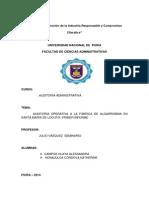 Primer Informe -Auditoria Administrativa