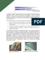 Geossinteticos Em Projectos Hidraulicos