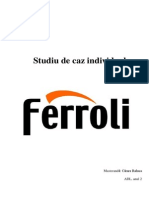 Studiu de Caz Ferroli