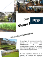 Vivero Forestal
