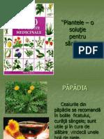 Ppt Plante Medicinale