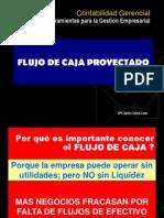 Flujo de Caja Proyectado Pwp