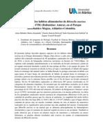 Informe Del Proyecto de Aula (Eco)