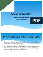 Acidos CarboxílicosMatienzo