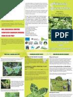 Mikania Micrantha Brochure