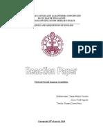 reaction paper tamar munoz vizcarra alison vidal sagredo