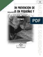 liderenprevencionderiesgos-111024201905-phpapp02