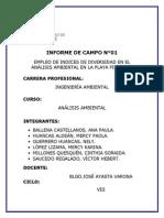 Informe de Campo 01- Análisis Ambiental (6)