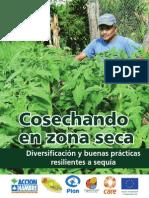 Cosechando en zona seca- Diversificación y buenas prácticas resilientes a sequía