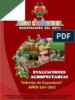 Informe de Coyuntura 2012