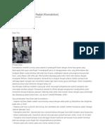 Kromatografi Sistem Radial