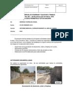 Informe de Seguridad y Salud en El Trabajo Mes de Febrero 2014
