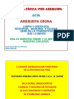 Informe Cerro Verde