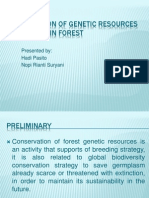 Conservation of Genetic Resources Tropical Rain Forest