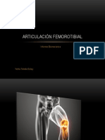 Articulación femorotibial